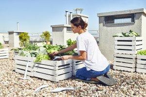 Garden care tool set PASTEL™