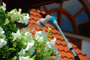 Telescopic watering lance IDEAL™
