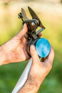 Hedge shears with a saw and extension IDEAL™
